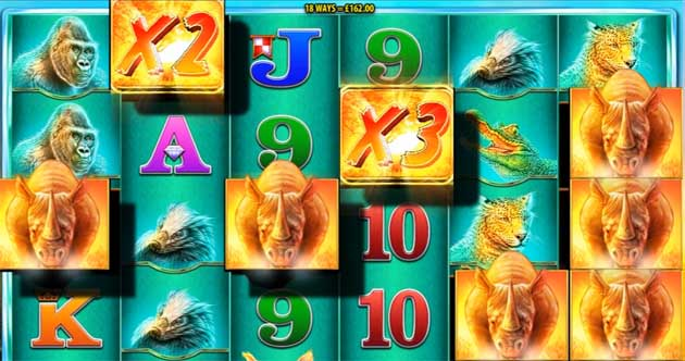 raging rhino online slot machine