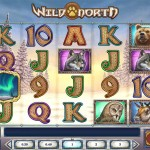 wild north slot review