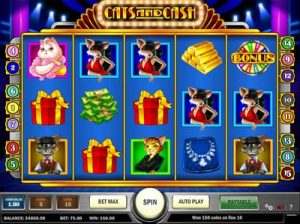 cats and cash slot review