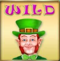 slots bonus wild symbol