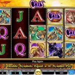cats igt slot review