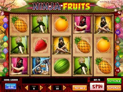 ninja fruits slot machine