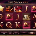the finer reels of life slot from microgaming