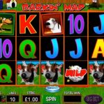 barkin mad slot review