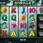 gorilla novomatic slot review