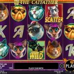 the cathfather slot review