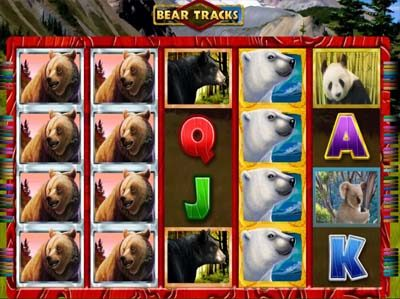 bear tracks online slot from novomatic