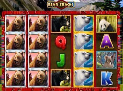 bear tracks online slot from novomatic