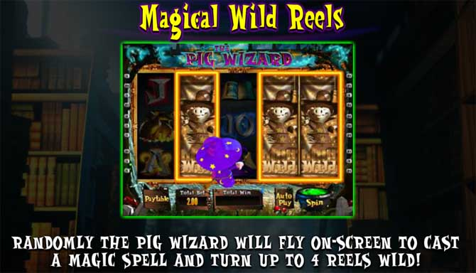 the pig wizard online slot bonus