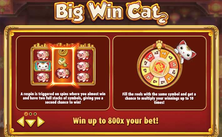 big win cat bonus feature